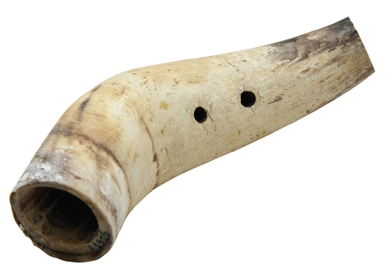 Horn pipes